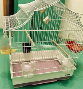 Клетка для птиц iMac Pagoda
