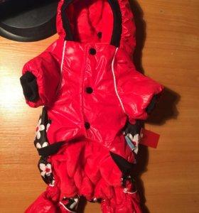 Зимний костюм для собаки
