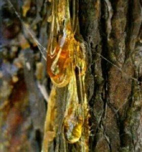 Патокрин,золотой корень,живица,каменное масло