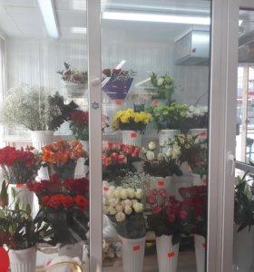 Оптовый склад цветов в курске, доставка на дом цветов в кременчуге кременчуг полтавская область