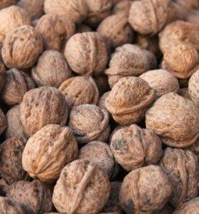 Грецкий орех урожай 2018