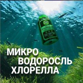 Питьевая хлорелла