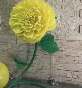 Объемные цветы, квиллинг, кофейные композиции