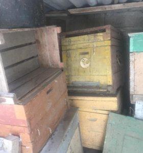 Ульи для пчёл