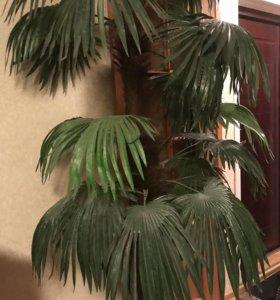 Продам пальму искусственная