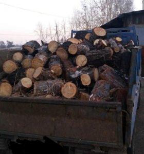 Продам дрова. Листвиница сухая