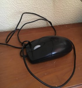Отдам мышку