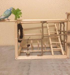 Стенд для попугаев