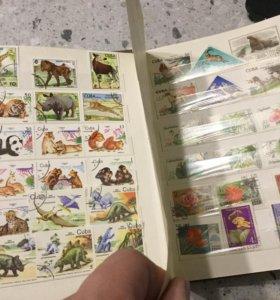 Коллекция марок в альбоме