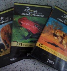 Диски со сказками,о чудесах света,о животных