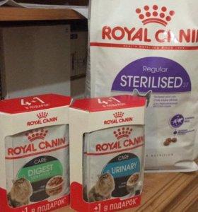 Корм для кошек «Royal Canin»