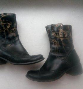 Казаки ботинки на меху Carnaby
