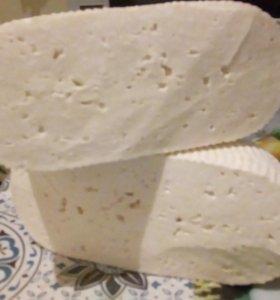 Сыр, Брынза, Сулугуни, Масло.опт.Доставка.