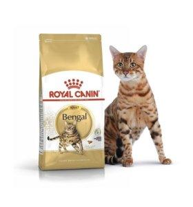 Royal Canin Bengal Adult 2kg !!!