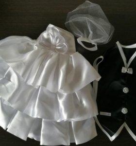 Одежда на свадебную бутылку