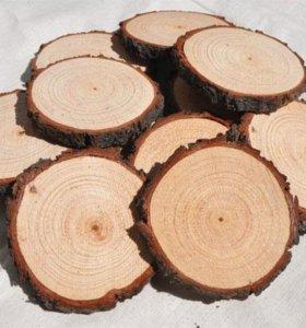 Спилы дерева