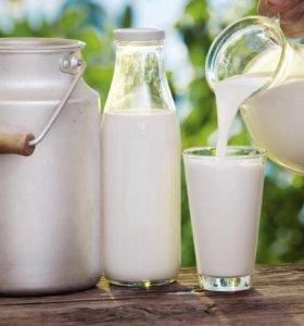 Домашняя Молочная продукция