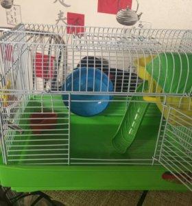 Клетка для хомячков+шар для прогулок