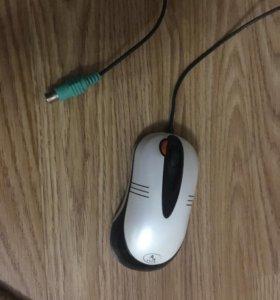 Мышь мышка для компьютера