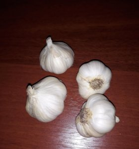 Дачный чеснок на семена 1шт. 30руб