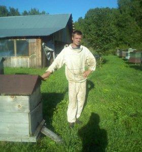 Продам пчёлыпакеты