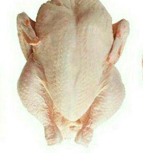 Тушка цыпленка бройлера