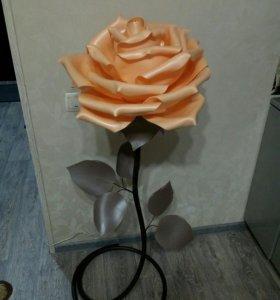 Роза ночник изолон