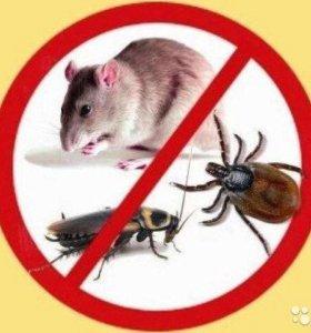 Уничтожение насекомых и грызунов!