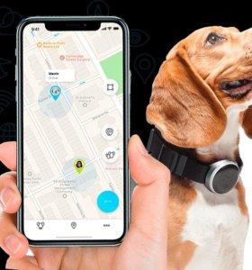 Новый GPS-трекер для собак Mishiko M102