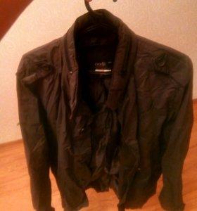 Плащ, куртка, мужская одежда