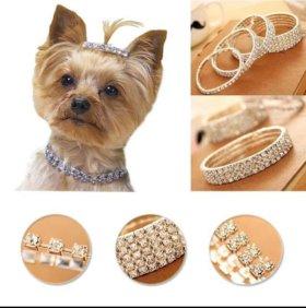 Ожерелье на собачку или кошечку