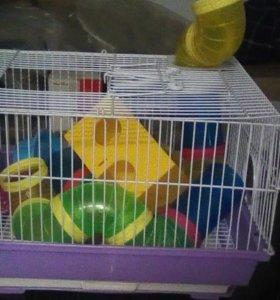 Клетка для грызунов с горкой и поилкой