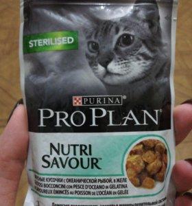 Purina Pro plan для кошек