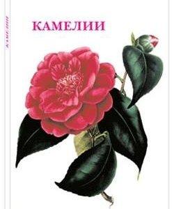 Наборы открыток от Изд. Белый город