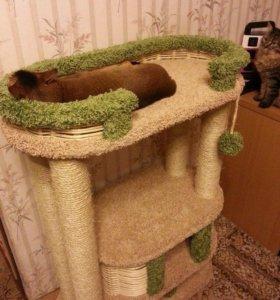 Комплекс, когтеточка, домик для кошки Фидика
