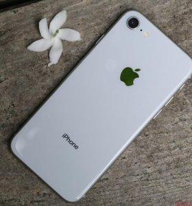 iPhone 8 / 8+