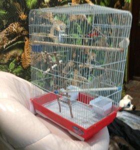 Дом для Птицы