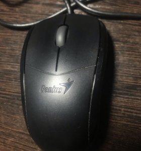 Мышка компьютерная Genius проводная