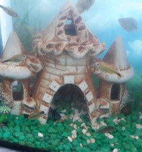 Декор аквариумный