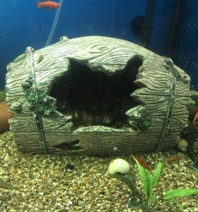 Декорации и фон для аквариума