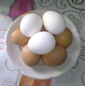 Яйца от свойских кур.