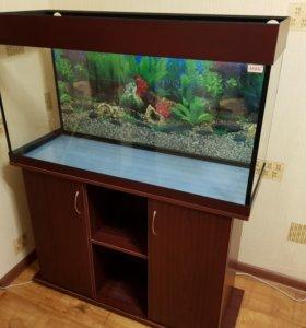 Продам аквариум,почти новый