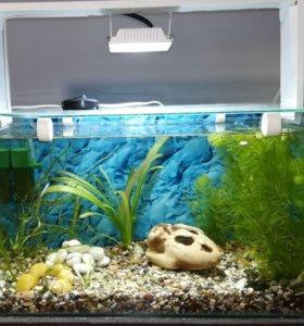 Продам новый, действующий аквариум на 30л.