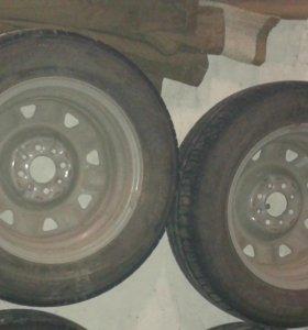 Два диска с шинами