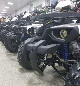 Квадроцикл Avantis в наличии в x-motors