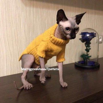 комбинезон для кота купить в люберцах цена 1 000 руб дата