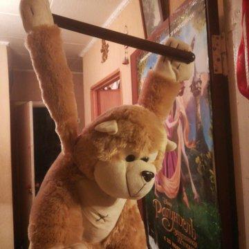 обезьяна на палке книга скачать