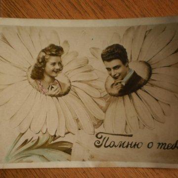 Шевцов и ко открытки