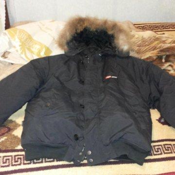 93c06bce6074 Пуховик фирмы Тайгер Форс – купить в Краснодаре, цена 2 000 руб ...
