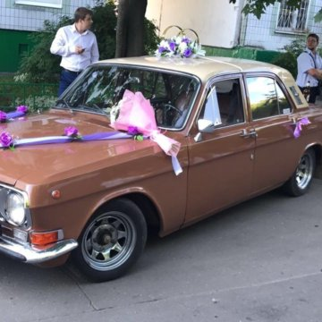 2bda20a730966 Свадебные кольца на машину – купить в Лобне, цена 300 руб., продано ...